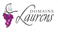 Logo domaine laurens